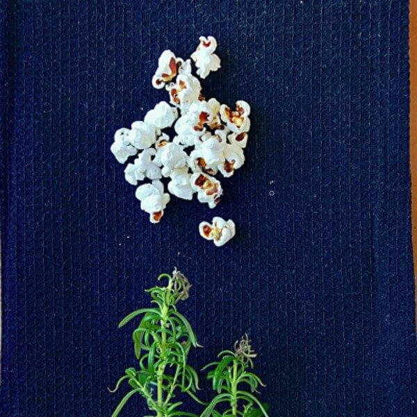 Popcorn bluecorn rozmarynowo-parmezanowy